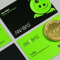 Anabas Stationery design and print