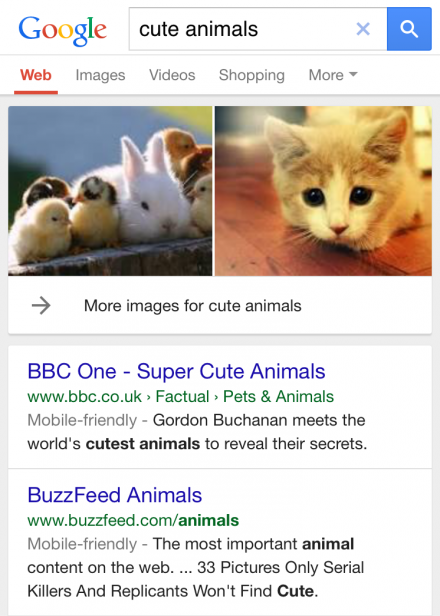 cute animal mobile friendly search